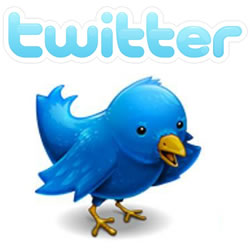 twitter-SEO - Search Engine Optimization